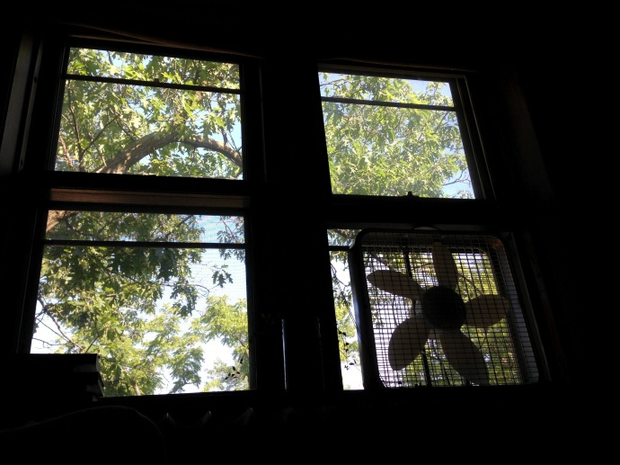 Devin和她的男朋友是果然永远不会住带空调的公寓的。即使我刚好遇到夏天最热的一周,也只好无数电风扇呼呼运转。